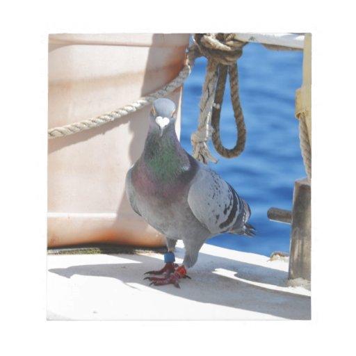 Homing Pigeon Memo Pad