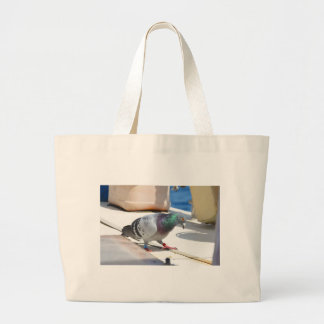 Homing Pigeon On A Yacht Bag
