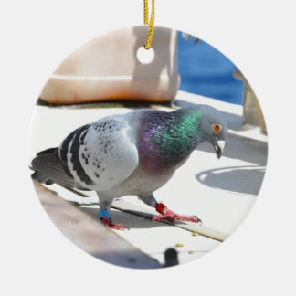 Homing Pigeon On A Yacht Round Ceramic Decoration