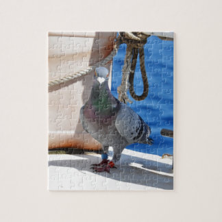 Homing Pigeon Puzzle