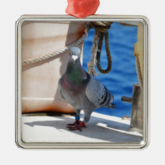 Homing Pigeon Silver-Colored Square Decoration