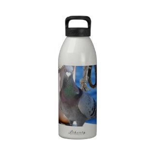 Homing Pigeon Water Bottles