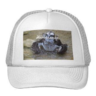Homossasa Osprey Hats