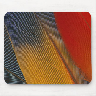 Honduras. Endangered scarlet macaw feathers, Mouse Mat