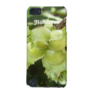 Honduras Hazelnuts iPod Touch (5th Generation) Cover