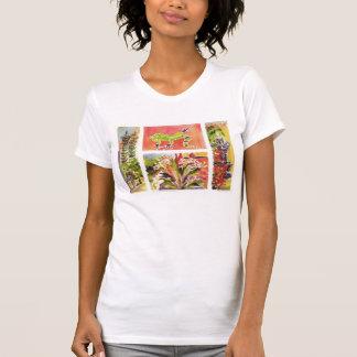 Honduras plaza t T-Shirt