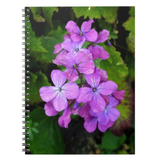 Honesty Notebook
