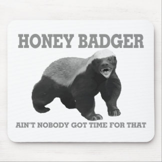 Honey Badger Ain't Nobody Got Time For That Mouse Mat