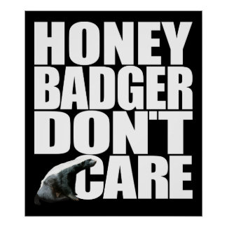 Honey Badger Don t Care Poster