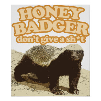 honey badger dont give a shit poster