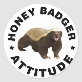 Honey badger has attitude classic round sticker