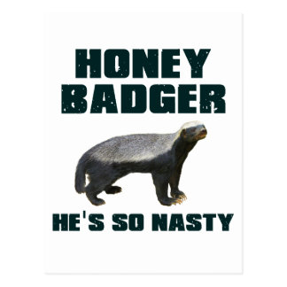 Honey Badger He's So Nasty Postcard