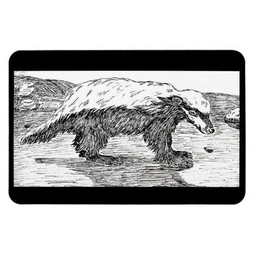 Honey Badger, Or Ratel Rectangle Magnets