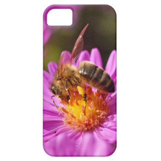 Honey bee and pollination iPhone 5 cases