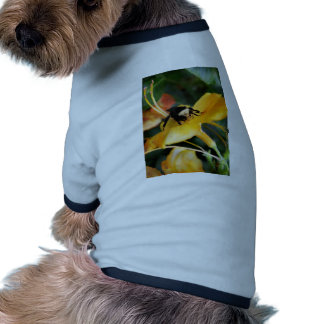 Honey Bee and Tiger Lily Dog Tee