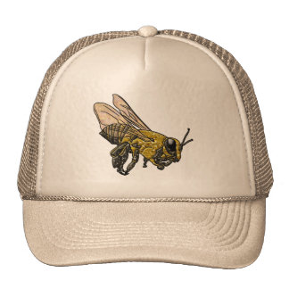 Honey Bee Cap