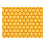 honey bee comb texture postcard