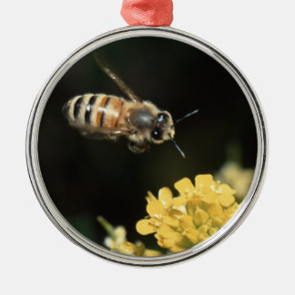 honey bee in flight Silver-Colored round decoration