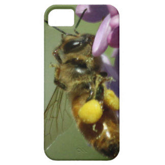 Honey Bee iPhone Case iPhone 5 Cover