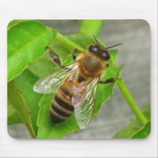 Honey Bee Mouse Mat