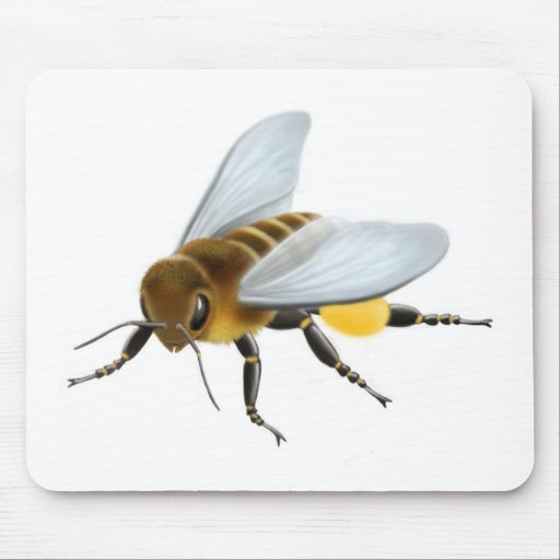 Honey Bee no sig Mouse Pads