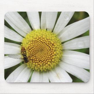 Honey Bee on a Daisy Mouse Pad