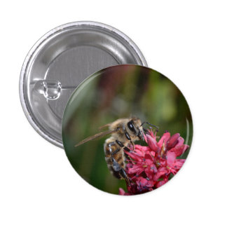 Honey Bee on a Pink Flower Button