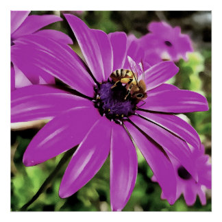 Honey Bee On A Spring Flower Poster