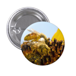 Honey Bee on a Sunflower 3 Cm Round Badge