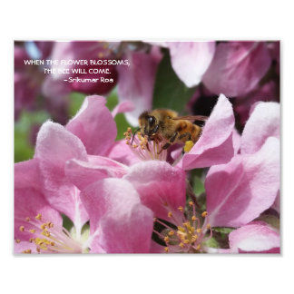 Honey Bee on Crabapple Blossom with Quote Photo Art