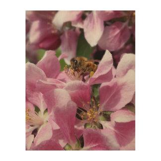 Honey Bee on Pink Crabapple Blossom by djoneill Wood Print
