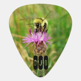 Honey Bee on Purple Blossom your Initials Plectrum