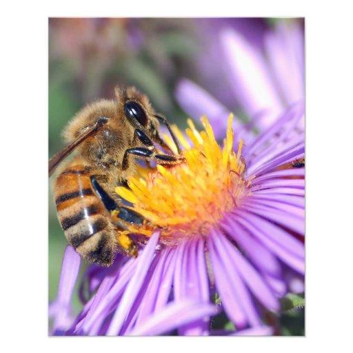 Honey Bee on Purple Pink Flower Personalized Flyer