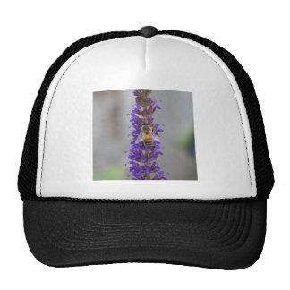 Honey Bee on Salvia Trucker Hat