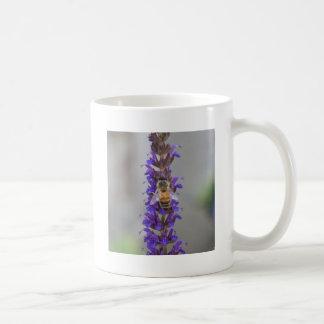Honey Bee on Salvia Coffee Mugs