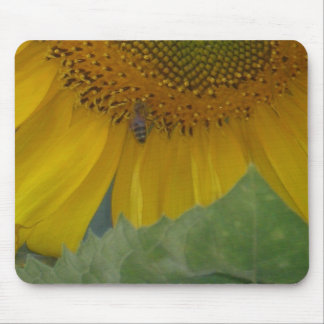 Honey Bee on Sunflower Mouse Pad