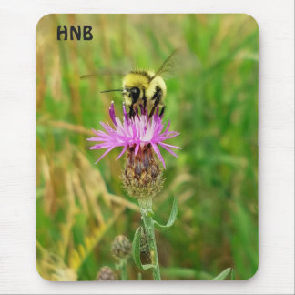 Honey Bee Pollinating Purple Flower Blossom Mouse Pad