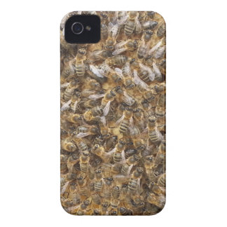 honey bees and more honey bees iPhone 4 Case-Mate cases