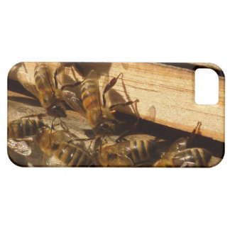 Honey Bees Barely There iPhone 5 Case