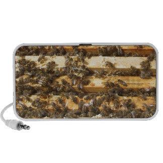 Honey Bees everywhere Mini Speakers