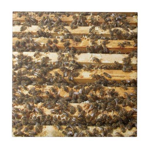 Honey Bees everywhere Tile