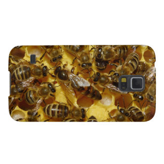Honey Bees in Hive with Queen in Middle Galaxy S5 Cover