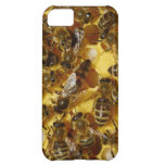 Honey Bees in Hive with Queen in Middle iPhone 5C Case