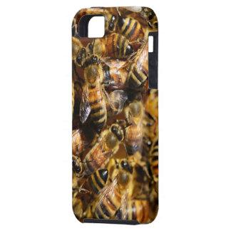 Honey Bees iPhone 5 Case