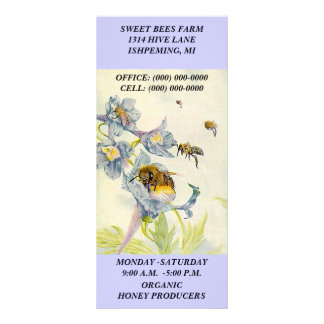 HONEY BEES & MORNING GLORY FLOWERS Rack Cards
