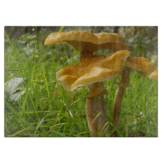 Honey Fungus Glass Chopping Board