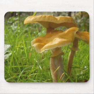 Honey Fungus Mouse Mat