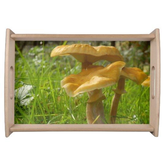 Honey Fungus Serving Tray