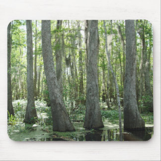 Honey Island Swamp Mouse Pad