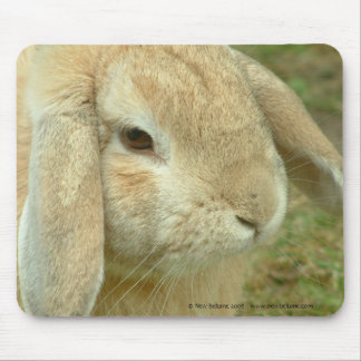 Honey,  Lop-eared Rabbit Mouse Mat